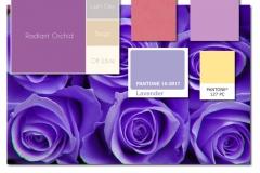 Light-Purple-Scheme