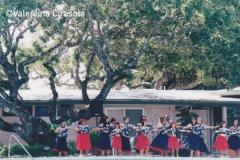 Portofino Inn - Luau Singers-Dancers